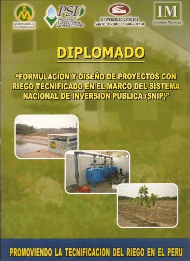diplomadoriego2008