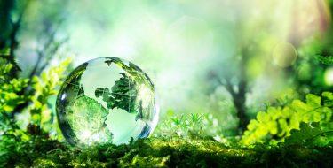 Un planeta de todos