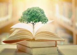 Educación ambiental: ¿cómo cuidar nuestro planeta?