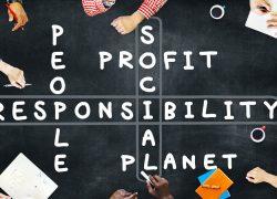 La Responsabilidad Social Universitaria (RSU): Una Perspectiva Sistémica