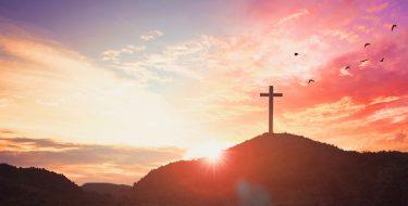 La santidad: vivir con amor en la cotidianidad