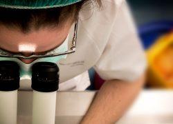 Un investigador debe amar lo que hace